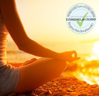 Mindfulness Para El Estrés (MBPM)