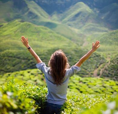 Mindfulness Atención Plena Al Momento Presente