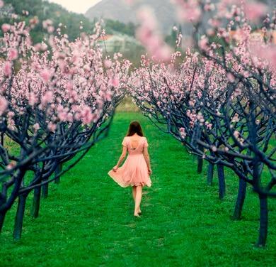 Gestion Del Estres Con Mindfulness El Camino Hacia El Bienestar